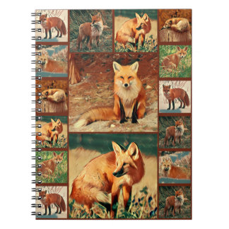 Red Fox Collection Notebook