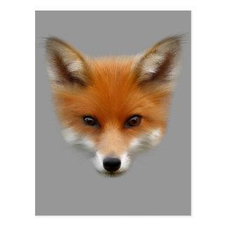 Red Fox Cub Postcard
