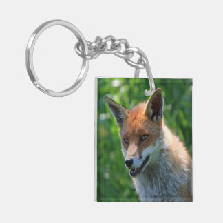 Red fox cute beautiful photo,  gift keychain