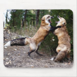 Red Fox - Dancing Mouse Pad