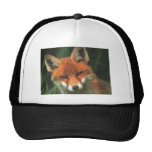 Red Fox Hats