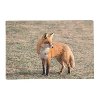 Red Fox in a field Placemat