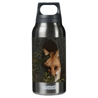 Red Fox in a Tree and Apparel Insulated Water Bottle
