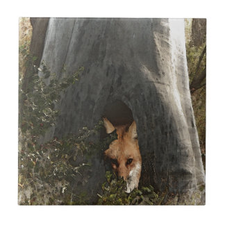 Red Fox in a Tree Gifts and Apparel Ceramic Tiles