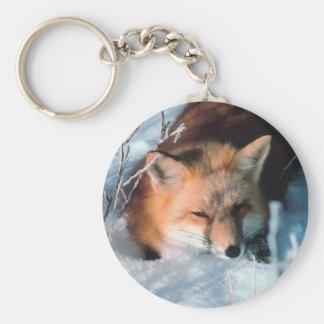 Red Fox in Snow Basic Round Button Keychain