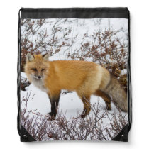 Red Fox in snow in winter Drawstring Backpack