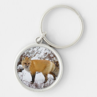Red Fox in snow in winter Keychain