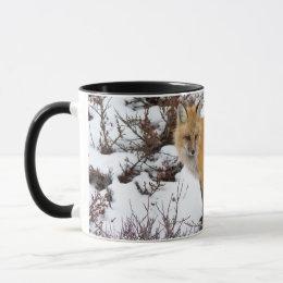 Red Fox in snow in winter Mug