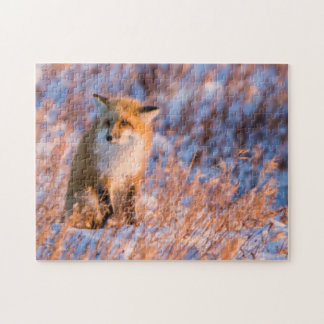 Red Fox in winter Churchill Wildlife Jigsaw Puzzle