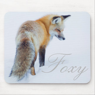 Red Fox in Winter Mouse Pad
