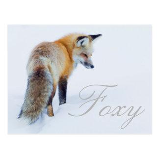 Red Fox in Winter Postcard