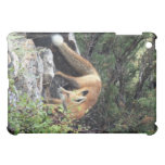 Red fox iPad mini covers