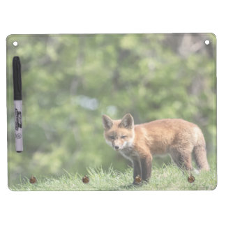 Red Fox Kit Dry Erase Board With Keychain Holder