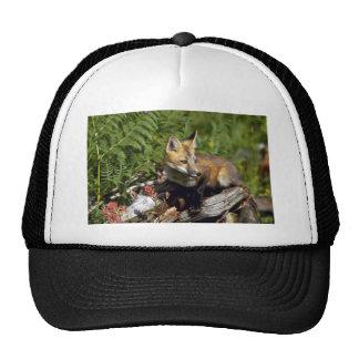 Red Fox kit Hats