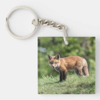 Red Fox Kit Keychain