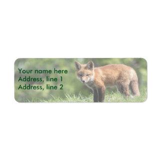 Red Fox Kit Label