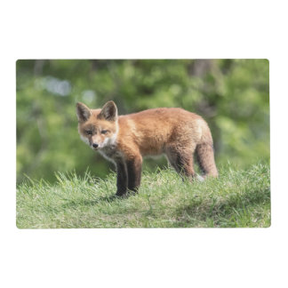 Red Fox Kit Placemat