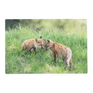 Red Fox Kits Placemat