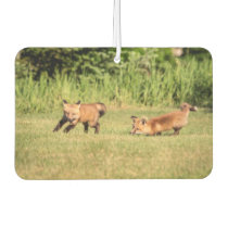 Red Fox Kits Playing Air Freshener