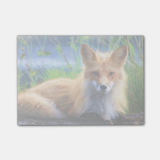Red Fox Laying in the Grass Wildlife Image Post-it Notes