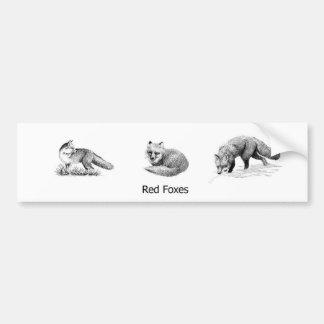 Red Fox Line Art (titled) Bumper Sticker