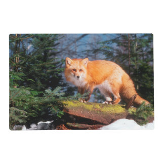 Red Fox on a log Placemat