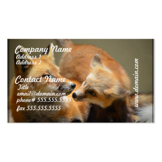 Red Fox Pair Double-Sided Standard Business Cards (Pack Of 100)