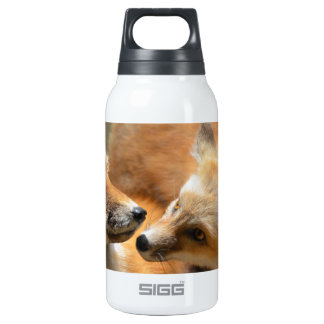 Red Fox Pair SIGG Thermo 0.3L Insulated Bottle