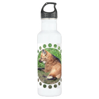 Red Fox Pictures 24oz Water Bottle