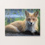 Red fox portrait beautiful photo jigsaw puzzle