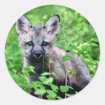 Red Fox Pup Classic Round Sticker
