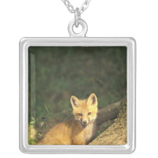 Red Fox pup in front of den (Vulpes vulpes) 2 Silver Plated Necklace