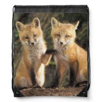 Red Fox pup in front of den Vulpes vulpes) Drawstring Bag