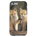 Red Fox pup in front of den Vulpes vulpes) Tough iPhone 6 Case