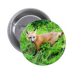 Red Fox Pup Pinback Button