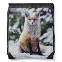Red Fox sitting on snow bank, Vulpes, Mt. Drawstring Bag