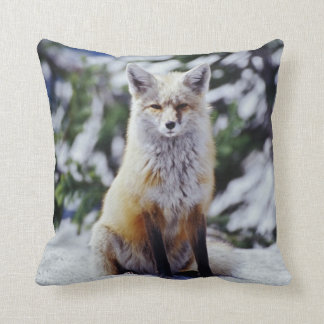 Red Fox sitting on snow bank, Vulpes, Mt. Throw Pillow