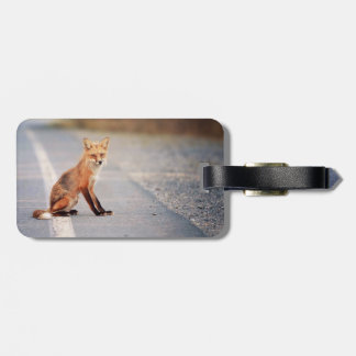 Red Fox Sitting on the side of the road Tag For Luggage