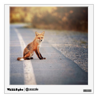 Red Fox Sitting on the side of the road Wall Decal