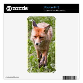 Red fox decals for iPhone 4S