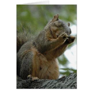 Red Fox Squirrel Notecard