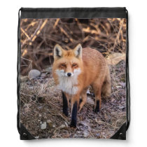 Red Fox up close and personal Drawstring Backpack