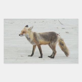 Red Fox Vixen - Island Beach State Park - NJ Rectangular Sticker