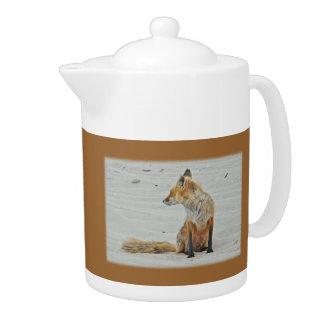 Red Fox Vixen - Island Beach State Park - NJ Teapot