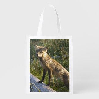 Red Fox, Vulpes fulva on log, Wildflowers, 2 Reusable Grocery Bag