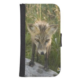 Red Fox, Vulpes fulva on log, Wildflowers, Galaxy S4 Wallet Cases