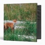 Red Fox, Vulpes vulpes, Alaska Peninsula, Vinyl Binder