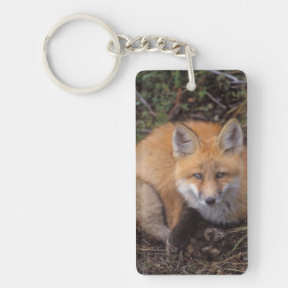 red fox, Vulpes vulpes, in fall colors along Double-Sided Rectangular Acrylic Keychain