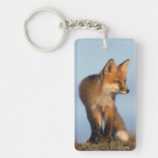 red fox, Vulpes vulpes, in the 1002 area of Double-Sided Rectangular Acrylic Keychain