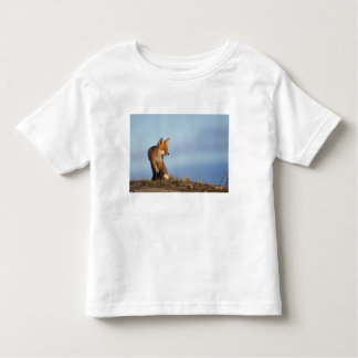 red fox, Vulpes vulpes, in the 1002 area of Toddler T-shirt